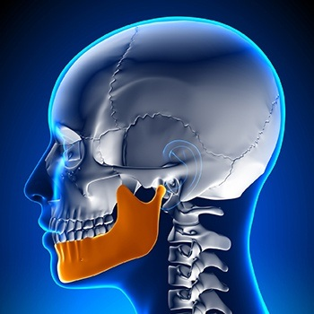 Animted jaw and skull bone connection